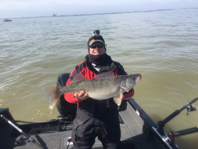 Lake erie fishing report fishing charters walleye for Lake erie walleye fishing report