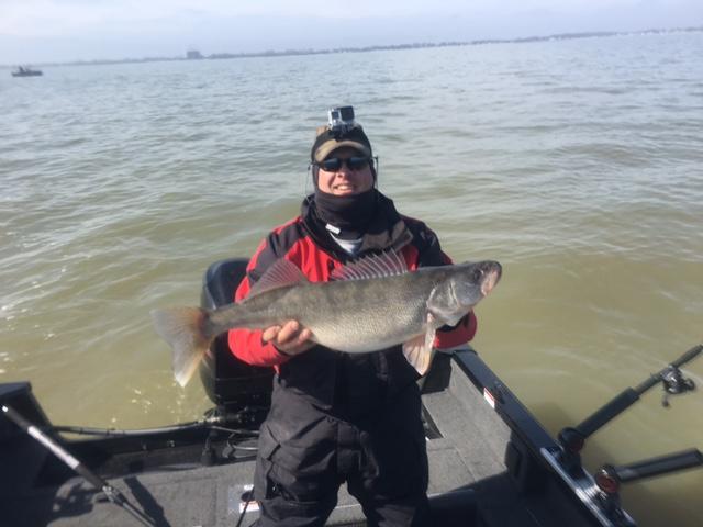 Lake erie fishing report fishing charters walleye for Fishing report lake erie