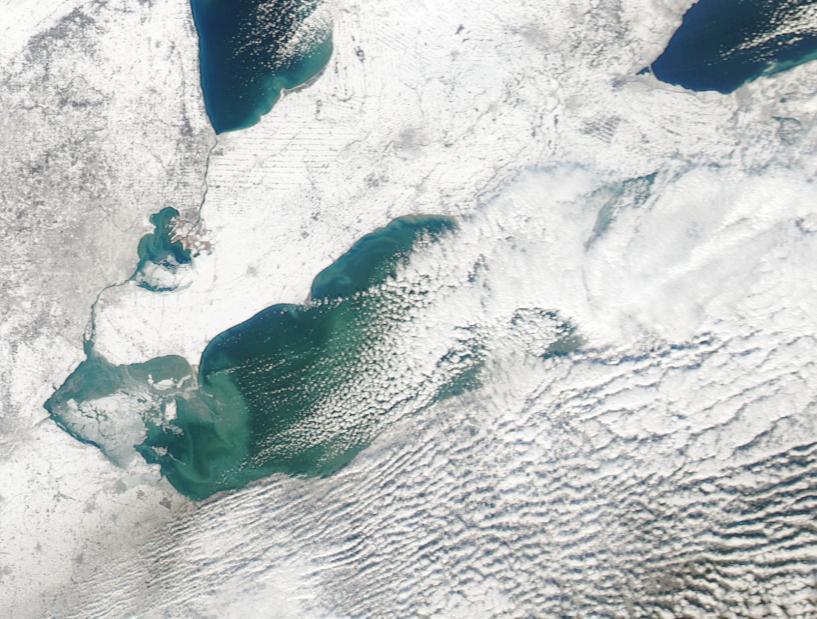Lake Erie Fishing Charters | Walleye - 98.6KB