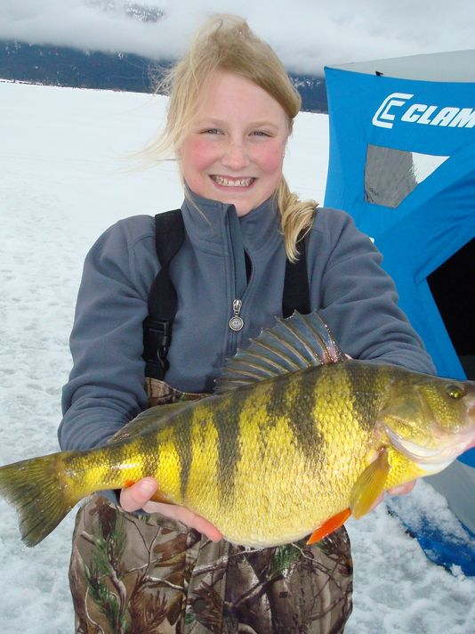 World record perch for Ice fishing perch