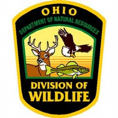 Weekly Ohio Division of Fisheries Lake Erie Fishing Report